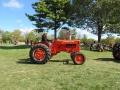 2012fallfestday1-95