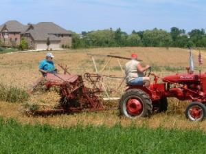 Grain Binder